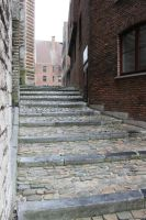 Winter Scenes - Cobbled Stairs by Qrinta