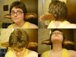 BtG - WEARABLE GAYAN EARS by In-Tays-Head