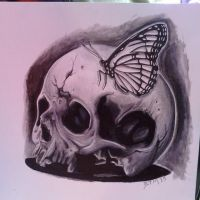 Skull and Butterfly final by fbatman666