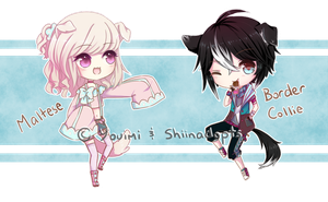 Adopt Collab: Youimi [CLOSED] by Shiinadopts