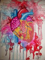 Anatomical Heart by Sakura-Koi
