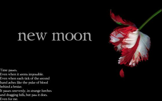New Moon: time passes. by tator-gator