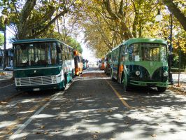Buses and trolleybuses by GladiatorRomanus