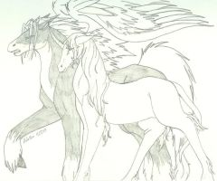 Equus by prettychaos