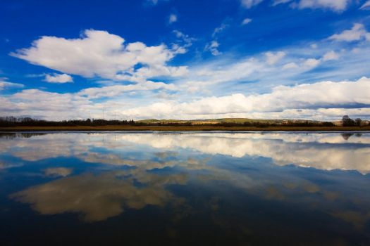 Reflections by Aasmund