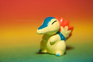 Over 10 years old figure of Cyndaquil by LuanaRPhotography