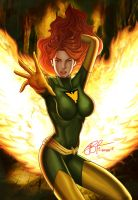 Phoenix on fire by gidge1201
