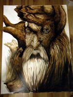 Tree beard by TheFranology