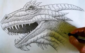 Mark Crilley Dragon Head Tutorial by MCorderroure
