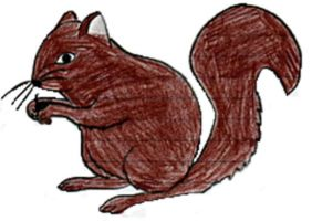 Its a squirrel with a nut by xstarsixnxthexnightx