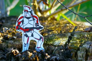Trooper by OneOfLifesMysteries