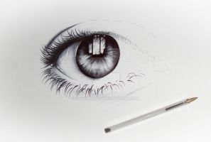 eyes in progress by RogerArtes