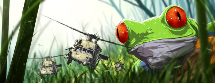 the frog's perspective by sambor