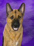 Commission--pet portrait--1 of 2 by Colliequest