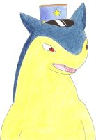 Officer Typhlosion by Typhfuun