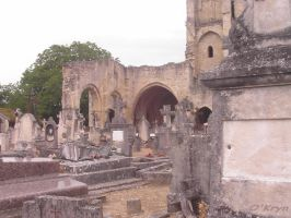 Cemetery on the church's ruins by MaxOKryn