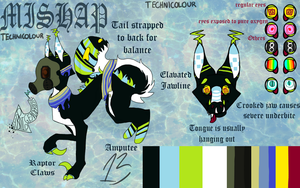 Mishap Reference Sheet by TECHNlCOLOUR