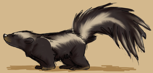 A skunk by Ribbedebie