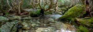 HDR_Thredbo_Creek8-pano by RichardjJones