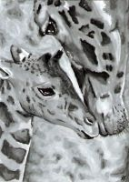 Giraffe - ACEO with Video by Sofera