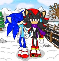 Sonadow Winter Wonderland by shadow2rulez
