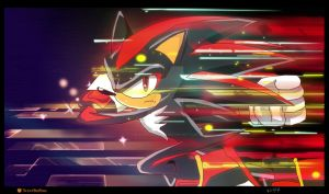 Shadow the hedgehog by BlackPicasso1989