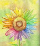 Rainbow Sunflower by MeadowDelights