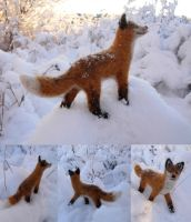 Needle Felted Fox by Halwen
