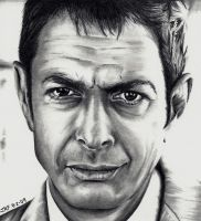 Jeff Goldblum by Rick-Kills-Pencils