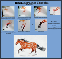 Traditional Tutorial: Black Points by RejectAll-American
