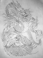 Asian Dragon Kr by kredwood
