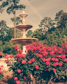 Rose Fountain by RebeKahsOwnPlace