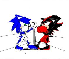 Soinc V.s Shadow In BOXING. by KcLee