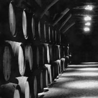 The Cellar. by NSergiu