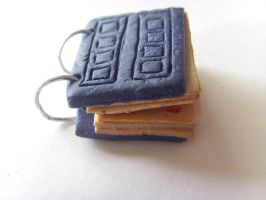 River Song's Diary Charm 1 by tyney123