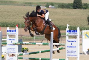 Level 5 Showjumping - L-Springen 6 by LuDa-Stock