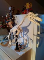 Velociraptor Skeleton Papercraft by Gedelgo