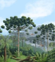 Carboniferous period araucaria forest by Almayer