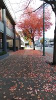 Ah Vancouver by Doks-Assistant