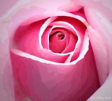 small pink rose by ash-becca
