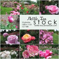 Package - Rose Stock by nettle-tea