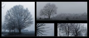 Cold Impressions by psychostange