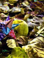 Colorfull fall by Juliemarie91