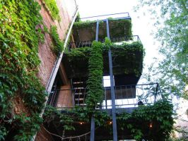 Ivy Building 4 by abuseofstock