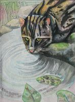 Fishing Cat by xRoccox