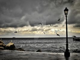 Sea-gulls and lamp by Abysska