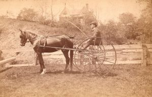 1888 Cart by Irie-Stock