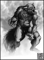 Werewolf - another concept by Talandors