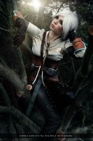 Ciri - The Witcher III by FioreSofen