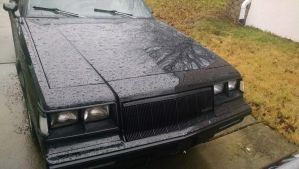 1983 Buick Regal by Garry98
